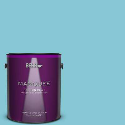 1 gal. #MQ4-50 Not a Cloud in Sight One-Coat Hide Ceiling Flat Interior Paint and Primer in One