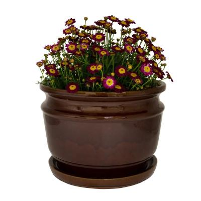 12 in. Dia Toffee Carafe Ceramic Planter