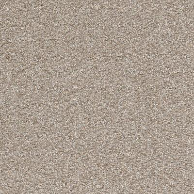 Perfected II - Color Masterly Texture 12 ft. Carpet