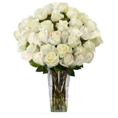 Gorgeous White Rose Bouquet in Clear Vase (36 Stem) Overnight Shipping Included