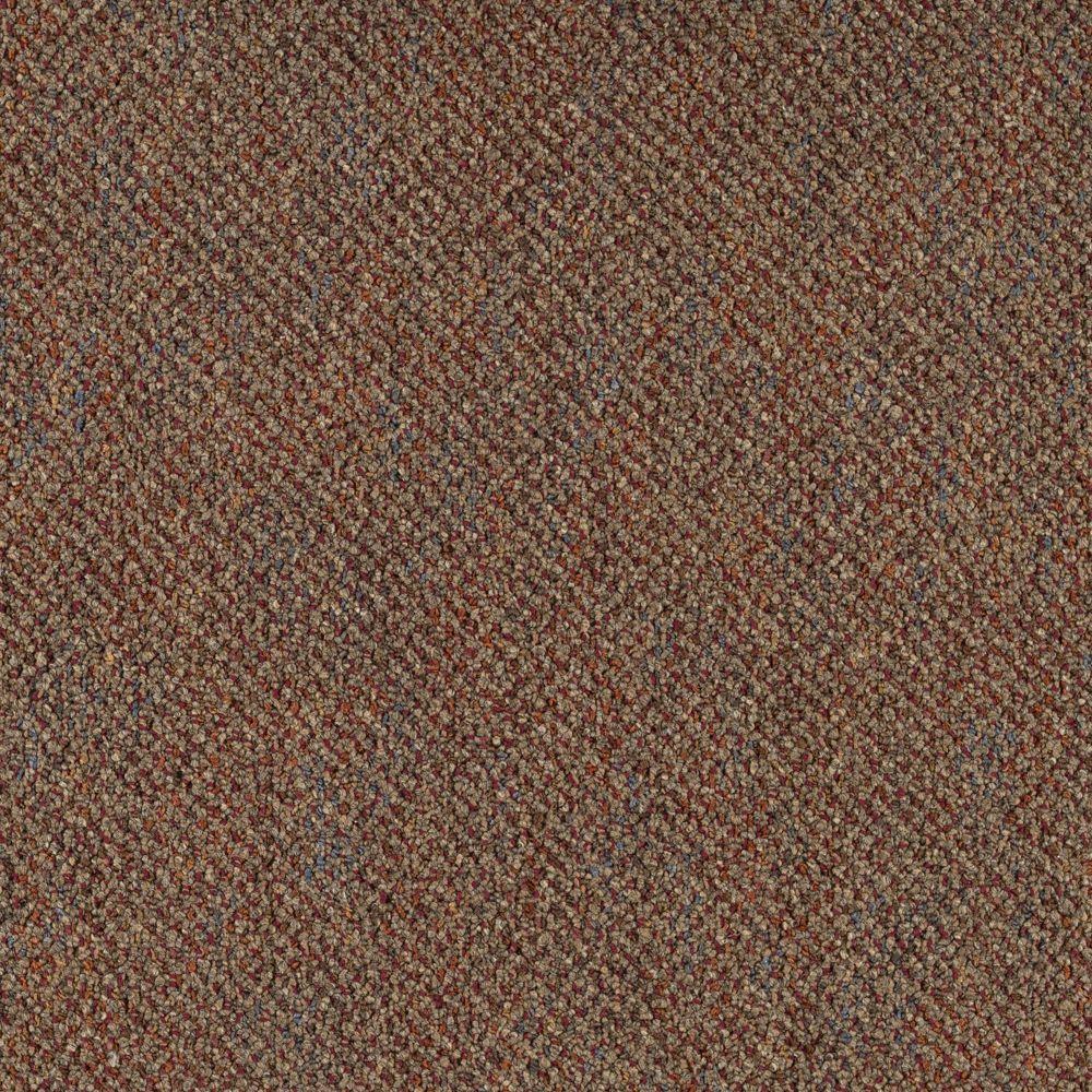 TrafficMASTER Brainstorm - Color Painted Desert 12 ft. Carpet