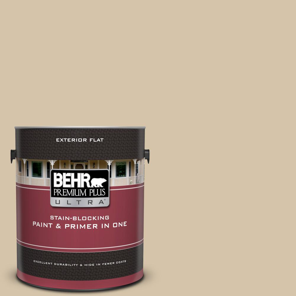 Icc 60 Brown Bread Flat Exterior Paint