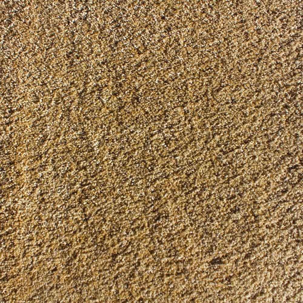 Luxe Splendor Texture 24 in. x 24 in. Residential Carpet Tile