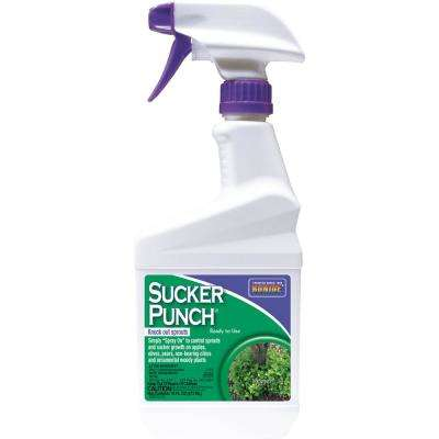 16 oz. Sucker Punch RTU Knock Out Sprouts