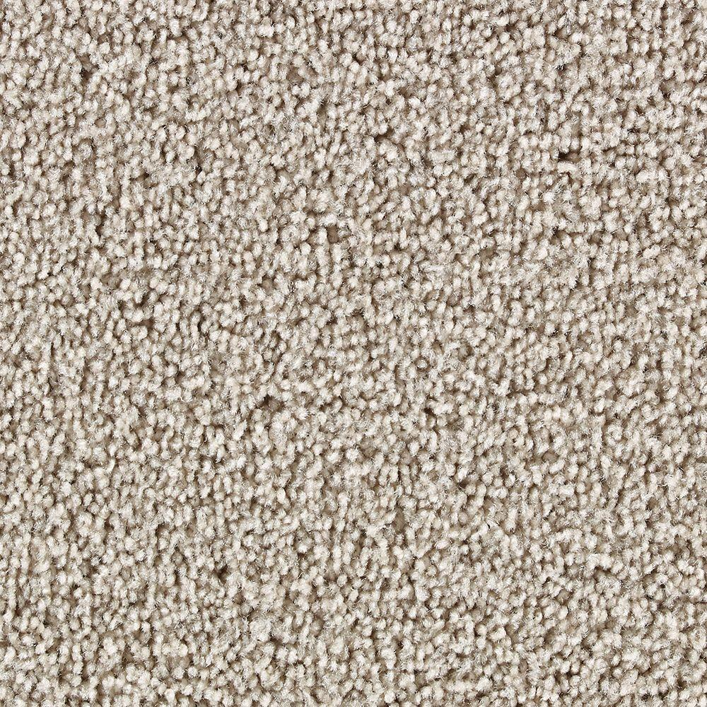 Martha Stewart Living Beechwood Gray Squirrel - 6 in. x 9 in. Take Home Carpet Sample-DISCONTINUED