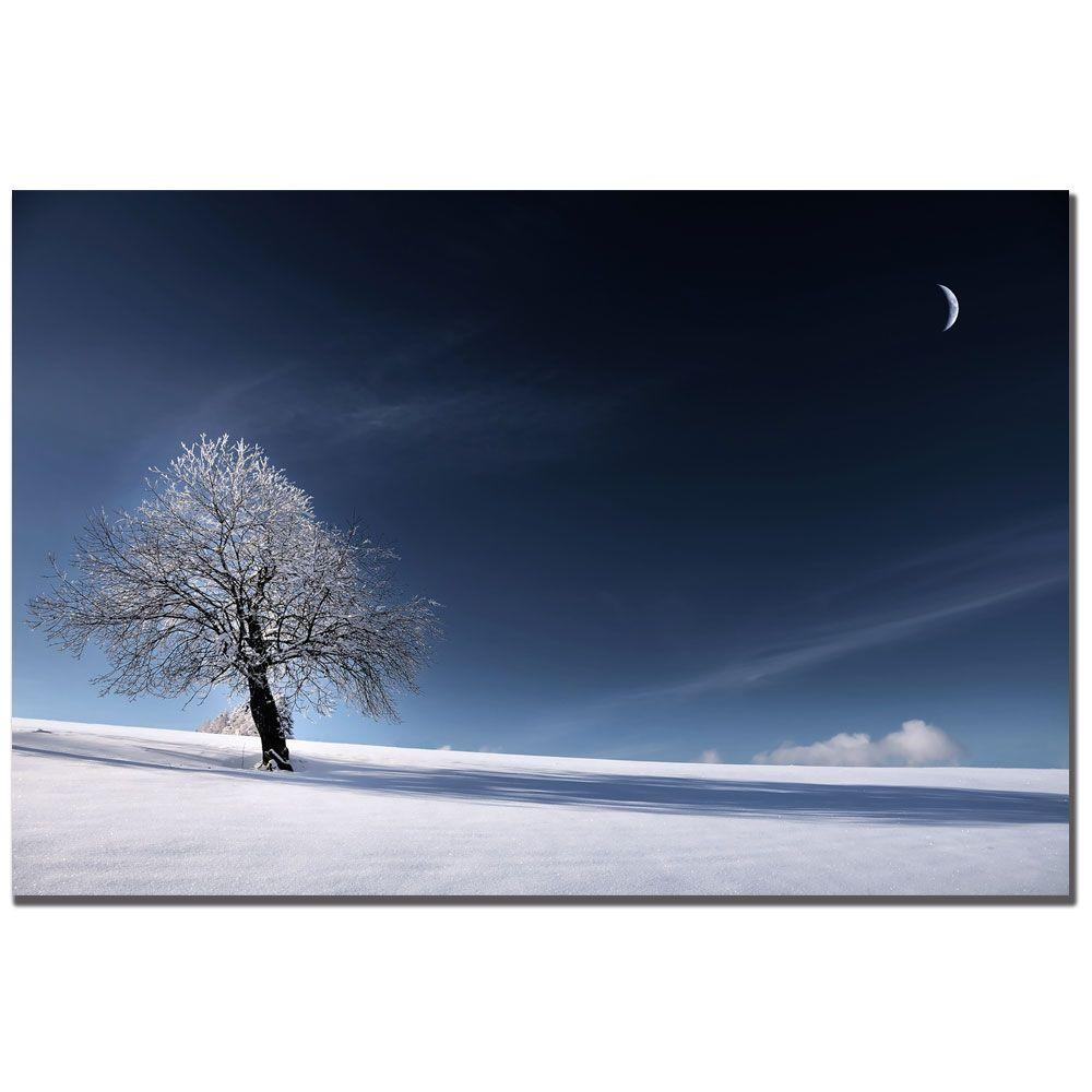 null 16 in. x 24 in. Blue as Snow Canvas Art-DISCONTINUED