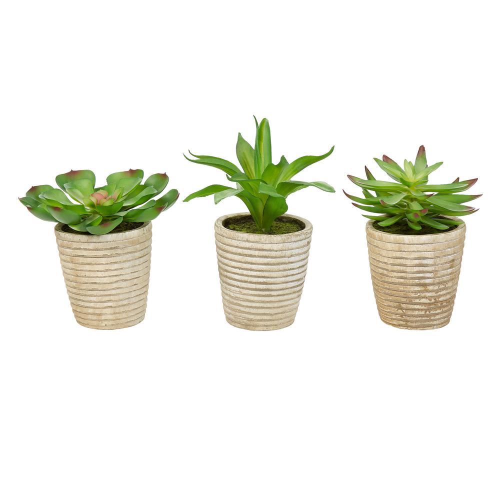 Assorted Faux Succulent Arrangements (Set of 3)