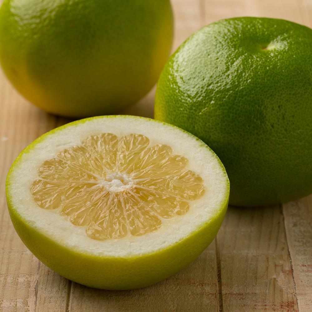 Grape Fruit Citrus Tree -  OroBlanco - 1 Plant