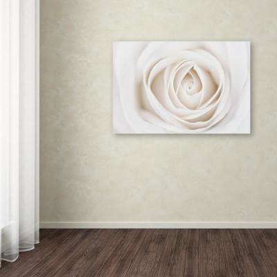 "30 in. x 47 in. ""White Rose"" by Cora Niele Printed Canvas Wall Art"