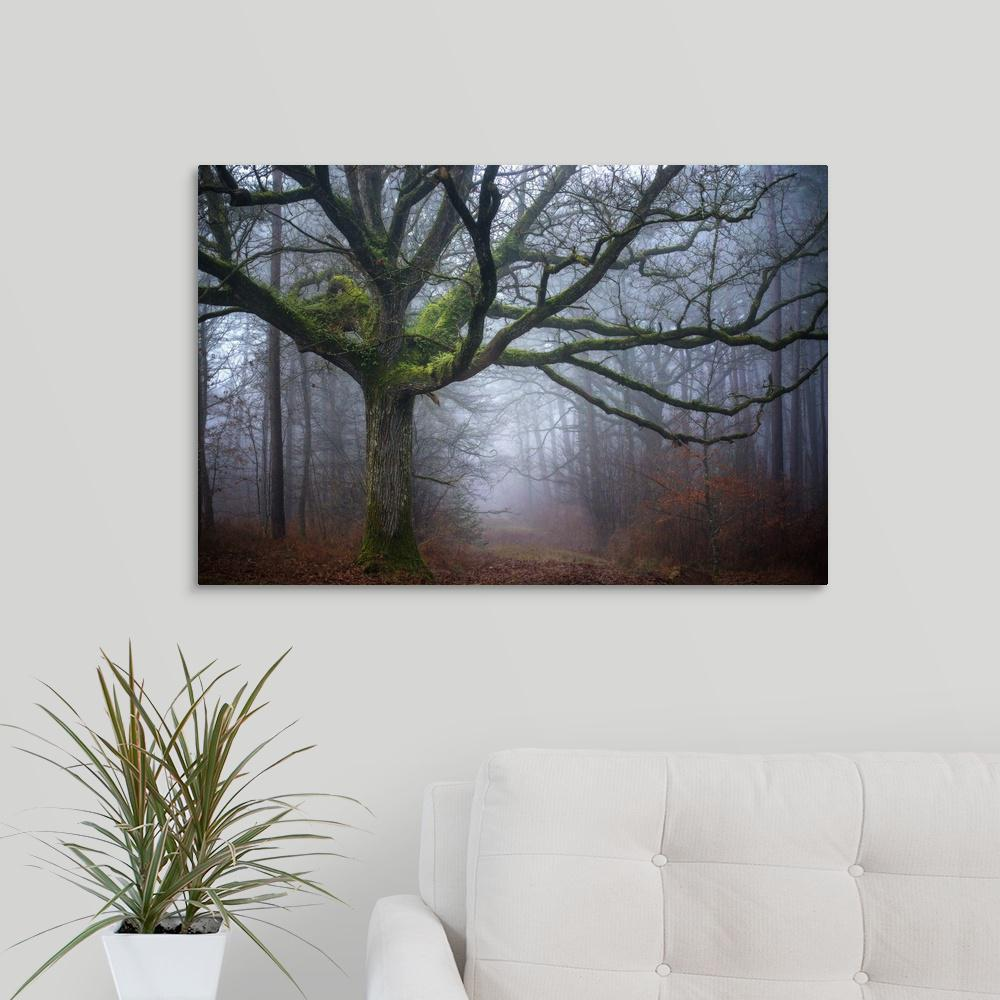 Greatcanvas Old Oak Tree By Philippe Manguin Canvas Wall Art 2497360 24 30x20 The Home Depot