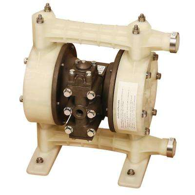 1 in. Double Diaphragm Pump for DEF