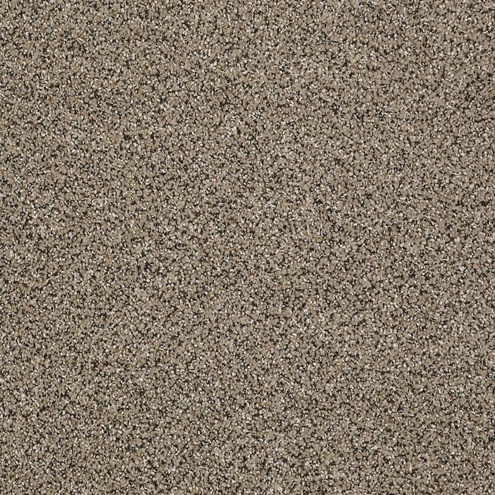 Home Decorators Collection Big Ticket - Color Rocky Shore Texture 12 ft. Carpet