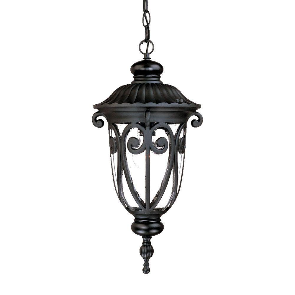 Naples Collection 1-Light Matte Black Outdoor Hanging Lantern Light Fixture