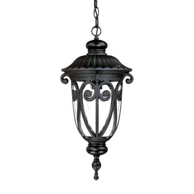 Naples Collection 1-Light Matte Black Outdoor Hanging Lantern Light Fixture