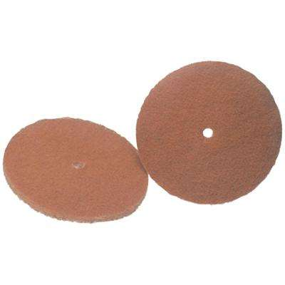6 in. Cleaning Pads (2-Pack)