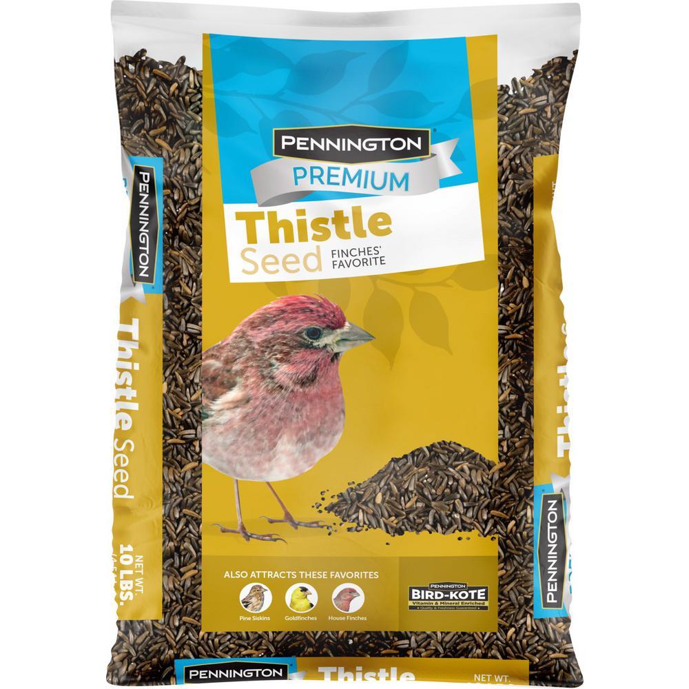 Premium 10 lbs. Thistle (Nyjer) Bird Seed