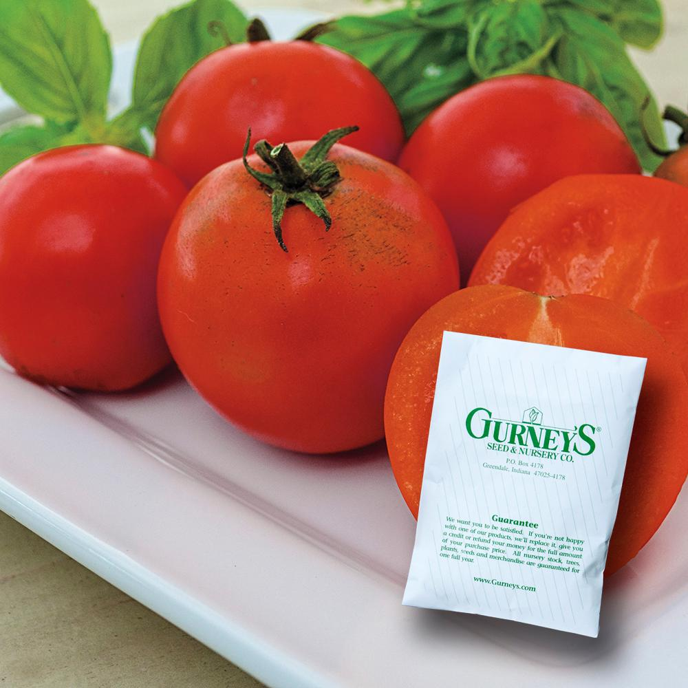 Tomato Easy Sauce Hybrid (15 Seed Packet)