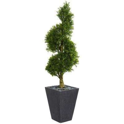 5 ft. High Indoor/Outdoor Boxwood Spiral Topiary Artificial Tree in Slate Planter