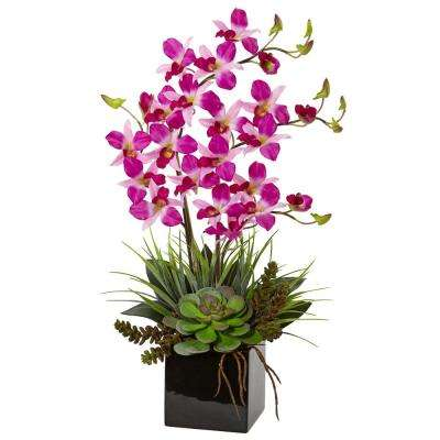 Indoor Orchid and Succulent Artificial Arrangement in Black Vase