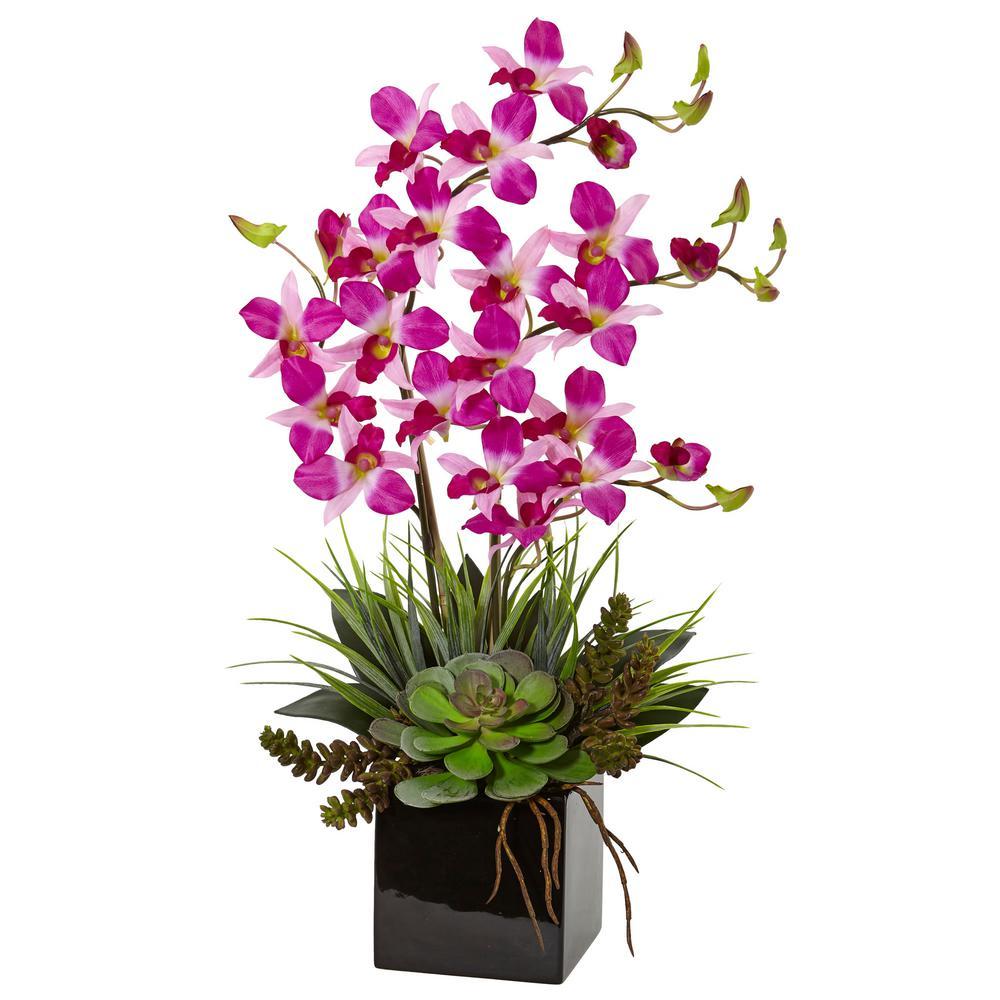 Indoor Orchid and Succulent Artificial Arrangement in Black Vase