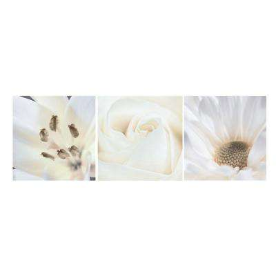 "Nexxt 12 in. x 12 in. ""Tulip, Spidermum, Chrysanthemum"" Floral 3-Panel Canvas Wall Art Set"