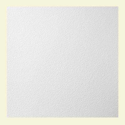 2 ft. x 2 ft. Stucco Pro Lay-in Ceiling Panel
