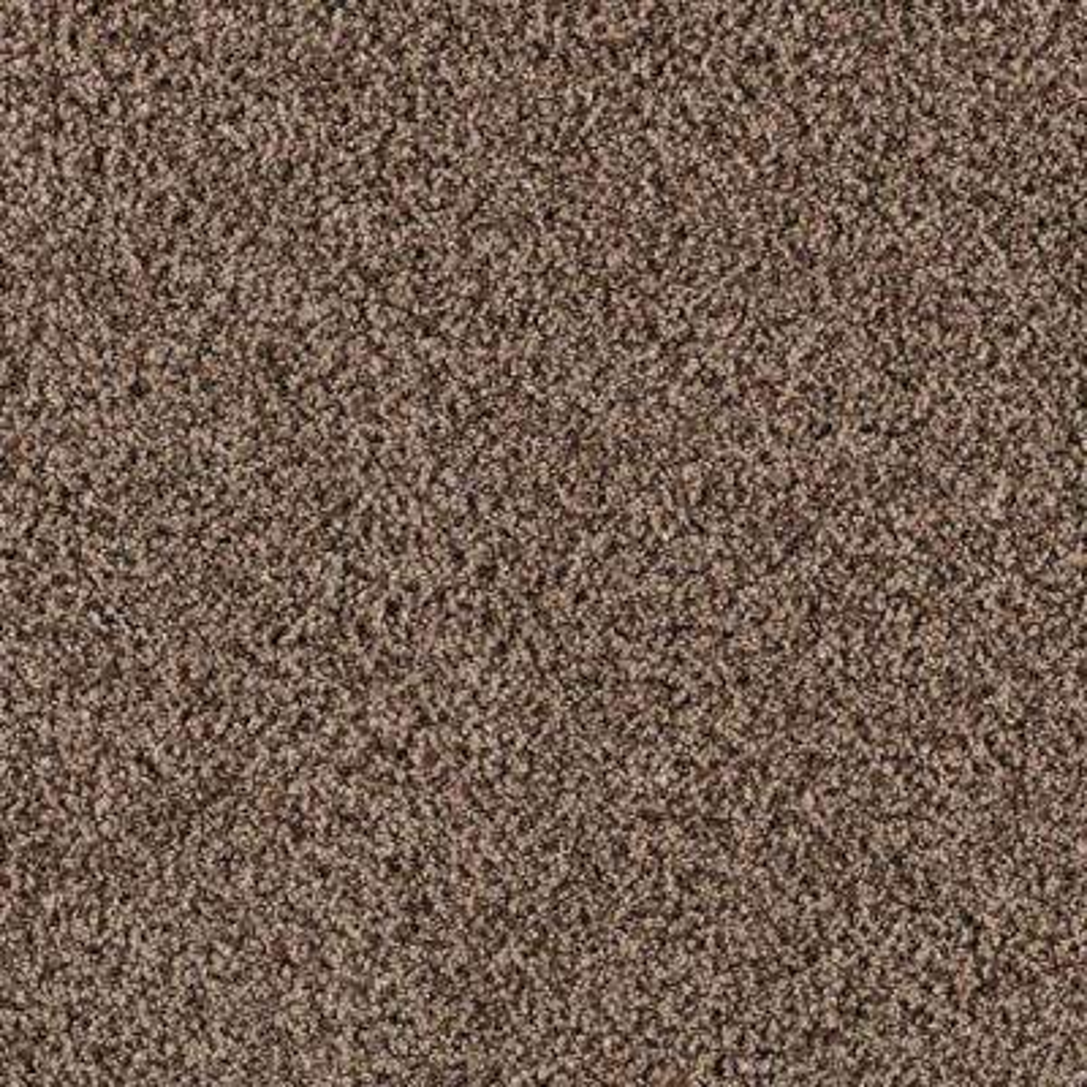 Carpet Sample - Metro I - Color Organic Texture 8 in. x 8 in.