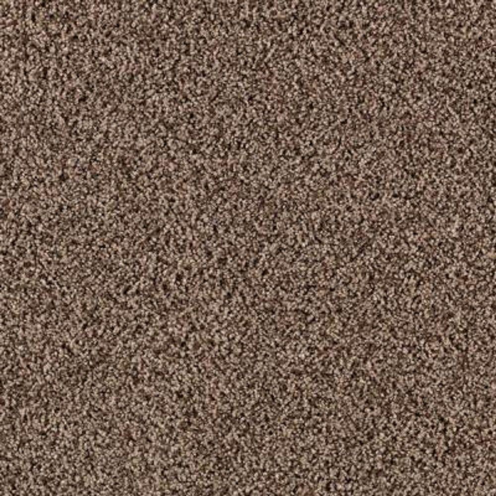 Carpet Sample - Metro II - Color Organic Texture 8 in. x 8 in.