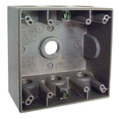 2-Gang Gray Weatherproof Box with Seven 1/2 in. Threaded Outlets