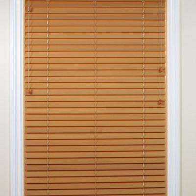 doors depot panel panels sheer bali glass ikea installation walmart wood blinds for sliding home window curtains