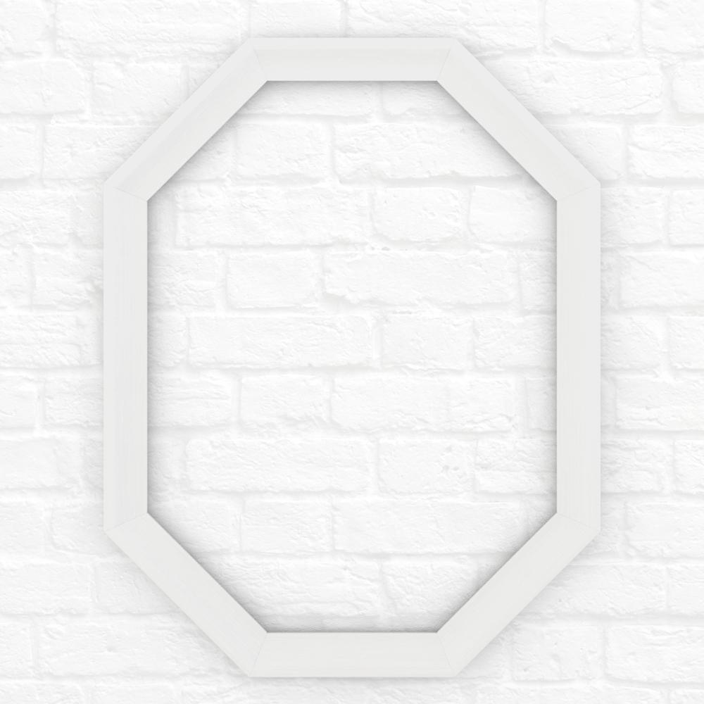26 in. x 34 in. (M2) Octagonal Mirror Frame in Matte White