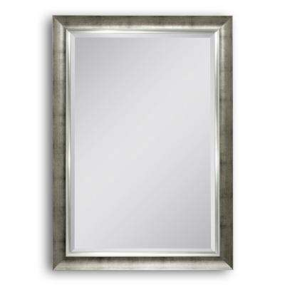 30 in. W x 42 in. H Brushed Champagne Wall Mirror
