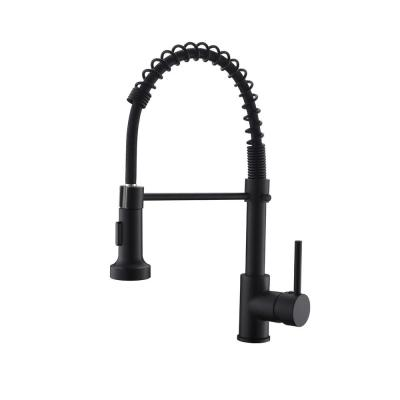 Stainless Steel Faucet Single-Handle Faucet Pull-Down Sprayer Kitchen Faucet Black