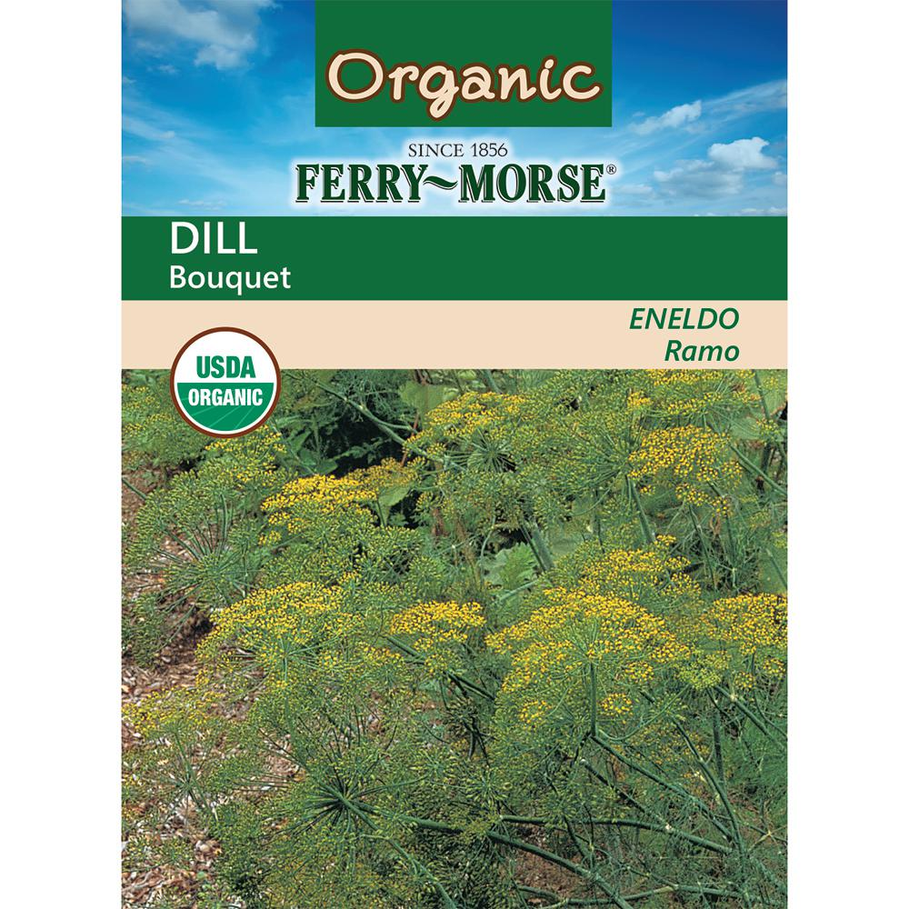 Dill Bouquet Organic Seed