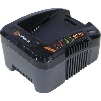 120-Volt Lithium-Ion Battery Charger