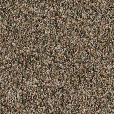 Carpet Sample - Playful Moments II Multi - Color Pecan Bark Texture 8 in. x 8 in.