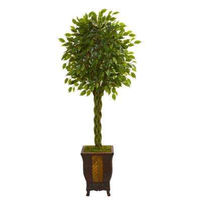 6 ft. High Indoor Braided Ficus Artificial Tree in Decorative Planter
