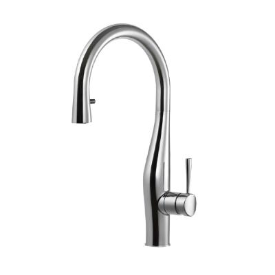 Vision Single-Handle Pull Down Sprayer Kitchen Faucet with Hidden Pull Down and CeraDox Technology in Polished Chrome