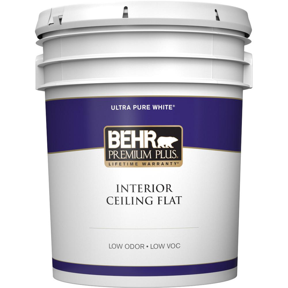 5 Gal White Flat Ceiling Interior Paint