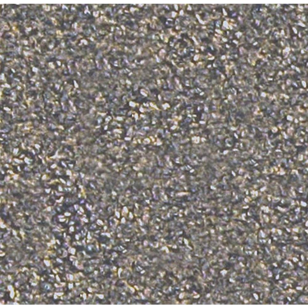 Benchmark 22 - Color Captain's Quarters 12 ft. Carpet