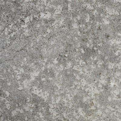 3 in. x 3 in. Granite Countertop Sample in Bianco Antico
