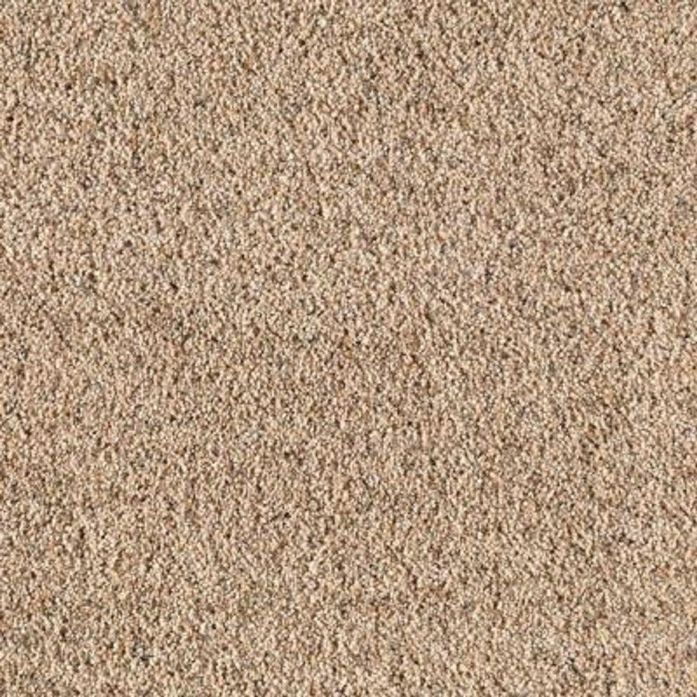 Carpet Sample - Kaa II - Color Birch Bark Texture 8 in. x 8 in.