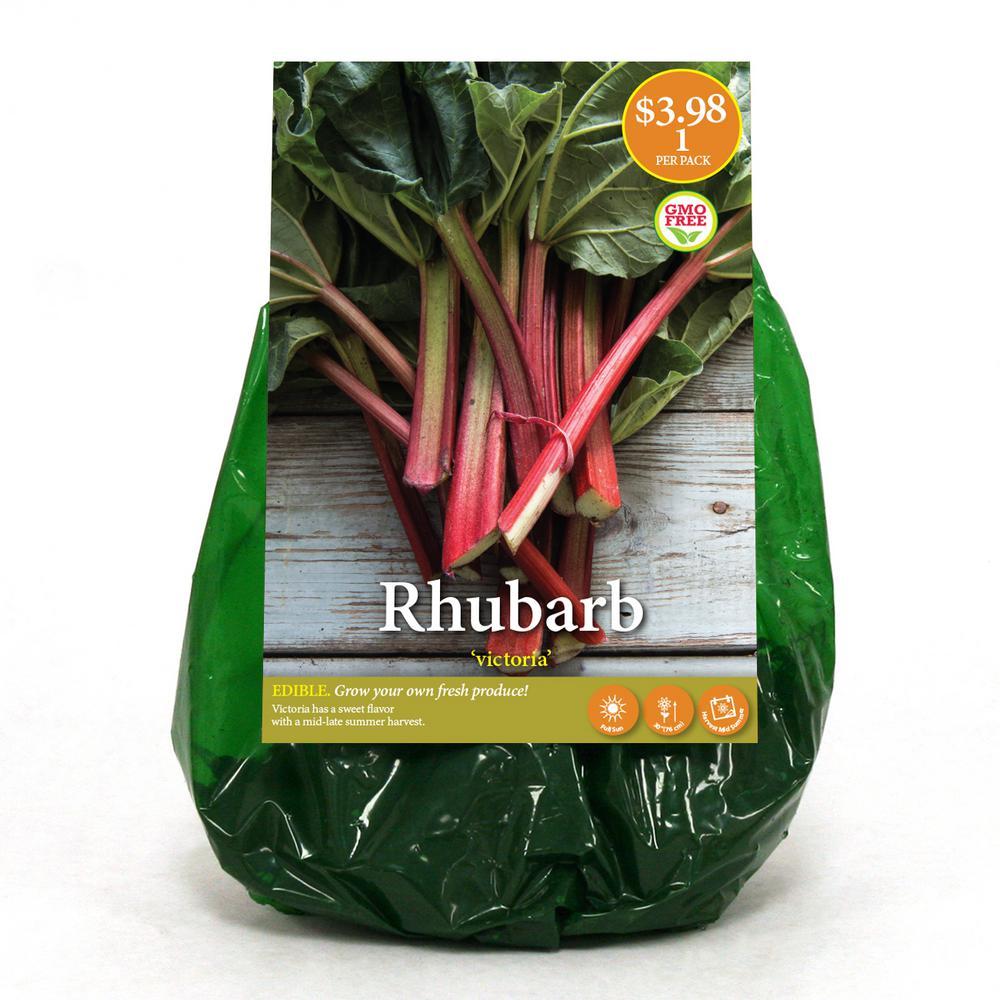 Red Victoria Rhubarb Bulb (1-Pack)