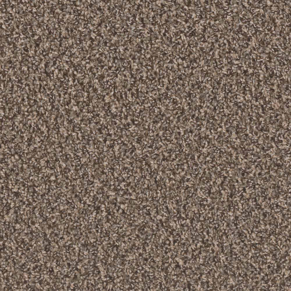 Dream Wish - Color Wealth Texture 12 ft. Carpet