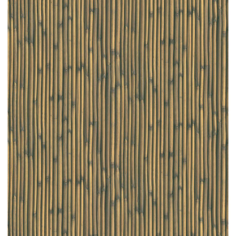 National Geographic 8 in. W x 10 in. H Bamboo Wallpaper Sample