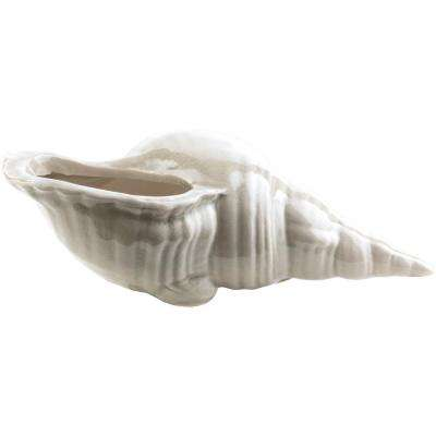 Sayina 9.25 in. x 3.74 in. Decorative Shell Sculpture in White
