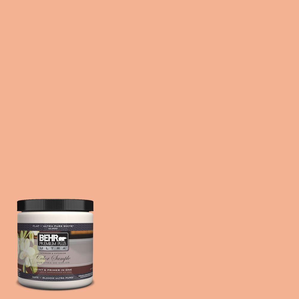 BEHR Premium Plus Ultra 8 oz. #PPH-27 Guava Juice Interior/Exterior Paint Sample