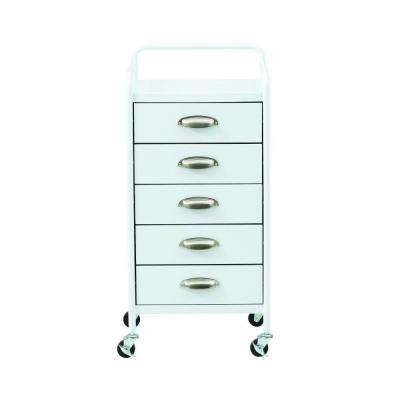 Steel 5-Drawer Cart in Glossy White