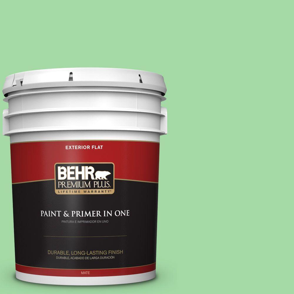 BEHR Premium Plus 5-gal. #450B-4 Green Trance Flat Exterior Paint