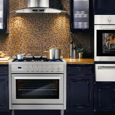 36 in. 3.8 cu. ft. Single Oven Gas Range with 5 Burner Cooktop and Heavy Duty Cast Iron Grates in Stainless Steel